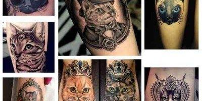 Tatuajes para amantes de los gatos